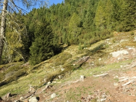 2018-09-29 Radelspitze cima Rodella (16)