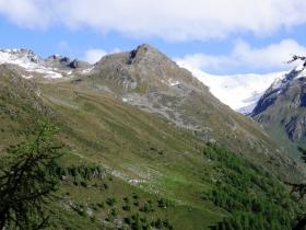 00 2008-06-18 sentiero monticelli al linge 008