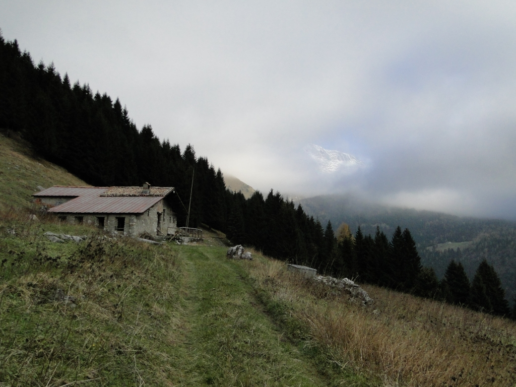 40 2013-11-17 Malghe Remescler 002