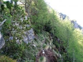 2017-05-21 cima Levante dalle crestine (121)