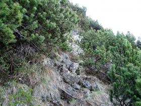 2017-05-21 cima Levante dalle crestine (124)