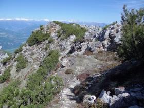 2017-05-21 cima Levante dalle crestine (136a)