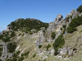2017-05-21 cima Levante dalle crestine (166)