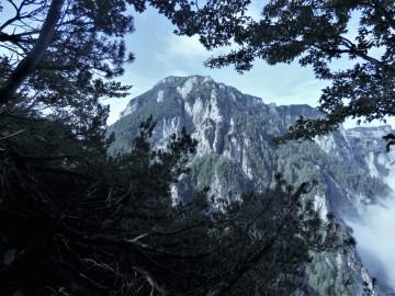 2019-08-08-cima-Trappola-109c