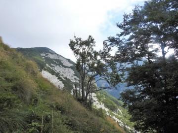 2019-08-08-cima-Trappola-122
