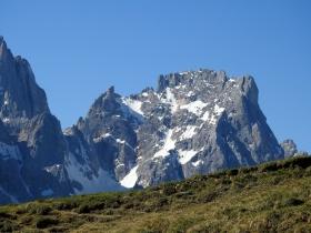 2017-06-11 cima Venegiota e Primula tyrolensis (129)