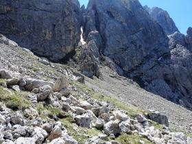 2017-06-11 cima Venegiota e Primula tyrolensis (157)