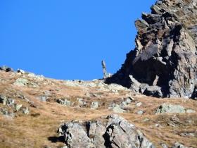 2017-10-15 val Grosina passo Marghera 013