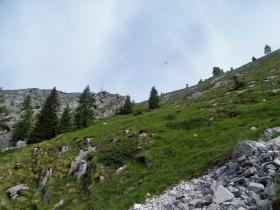 2017-06-14 Valle Scura e Ferrante (15)