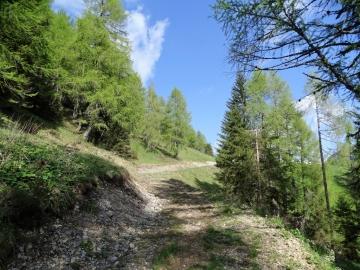 2019-06-08 m.te Grotta Rossa (20)