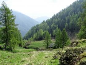 2019-06-08 m.te Grotta Rossa (30)