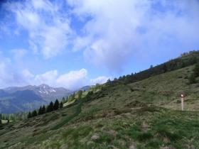 2019-06-08 m.te Grotta Rossa (35)