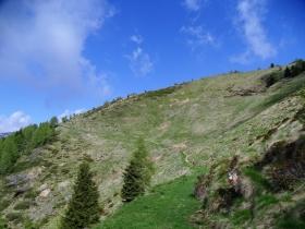 2019-06-08 m.te Grotta Rossa (36)