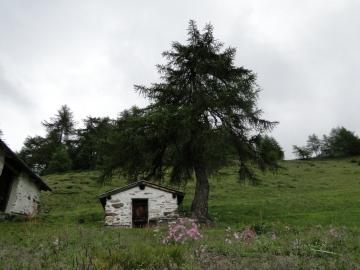 00 2011-06-04 Pagano periplo 004