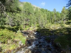 2017-08-04 valle di Peder (10)