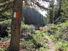 2017-08-04 valle di Peder (13)