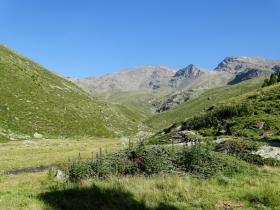 2017-08-04 valle di Peder (23)