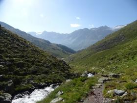 2017-08-04 valle di Peder (32)