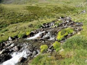 2017-08-04 valle di Peder (38)