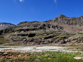 2017-08-04 valle di Peder (49)