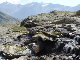 2017-08-04 valle di Peder (65)