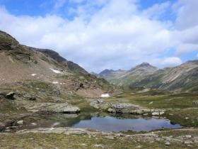 2018-07-10 laghi della Forcola e Primula integrifolia 043