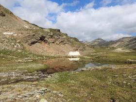 2018-07-10 laghi della Forcola e Primula integrifolia 044