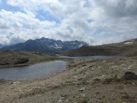 2018-07-10 laghi della Forcola e Primula integrifolia 063