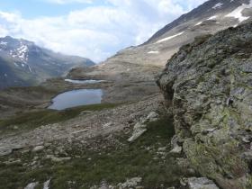 2018-07-10 laghi della Forcola e Primula integrifolia 073