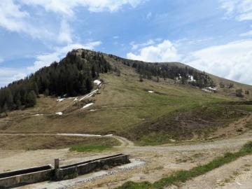2019-05-26 malga Serolo e Rive 030