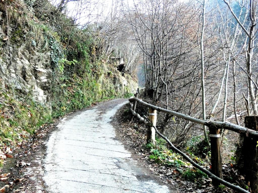 2019-12-04-malga-Vesgheno-11