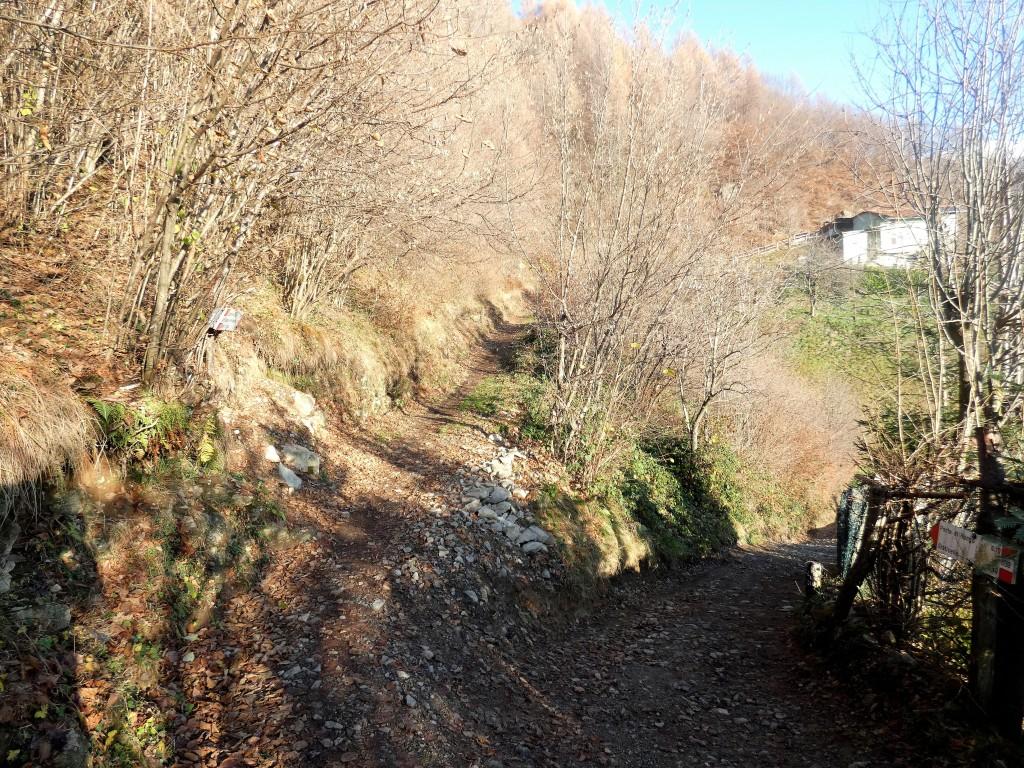 2019-12-04-malga-Vesgheno-26