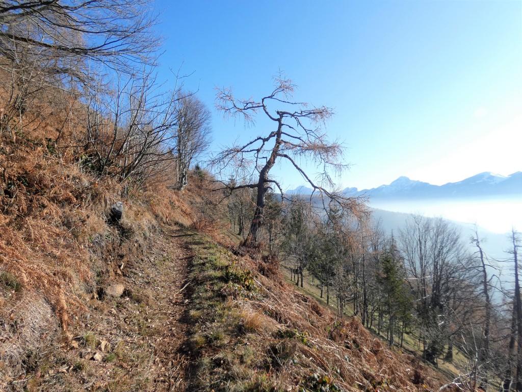 2019-12-04-malga-Vesgheno-48