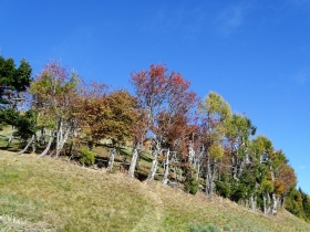 2018-10-24 monte Carena (38)