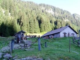 2018-07-28 monte Cauriol (12)