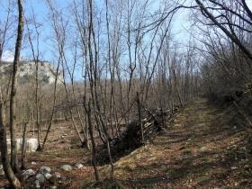 2018-03-14 monte Cordespino e forte S.Marco 058