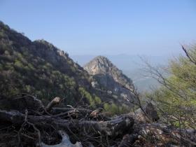 2018-04-25 monte Foldone da Catremerio (37)