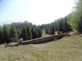2018-04-25 monte Foldone da Catremerio (74)