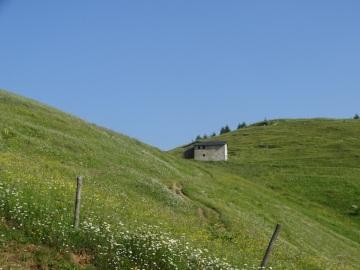 2020-06-24-monte-Guglielmo-15