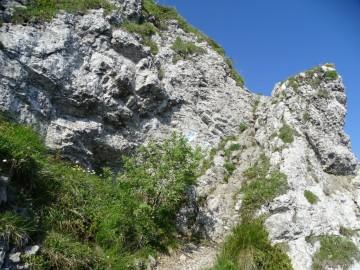 2020-06-24-monte-Guglielmo-26
