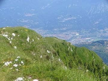2020-06-24-monte-Guglielmo-42