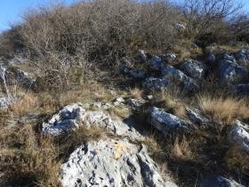 2018-01-21 Monte Pastello da Ceraino e forti (155)