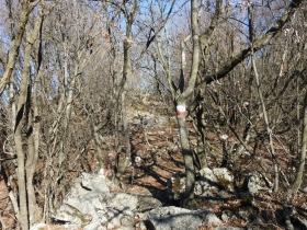 2018-01-21 Monte Pastello da Ceraino e forti (168)