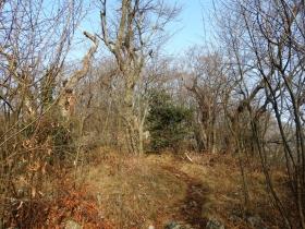 2018-02-18 monte Podona 008
