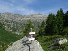 2017-06-21 monte Remà valle Aperta (15)