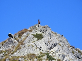 2017-08-30 monte Stabio 021