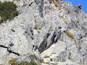 2017-08-30 monte Stabio 021a