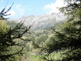 2017-08-30 monte Stabio 058