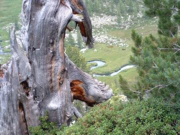 passo di Latola 07-ago-2004 (20).jpg