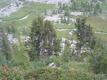 passo di Latola 07-ago-2004 (21).jpg